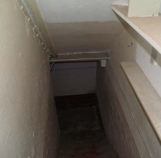 Cellar Conversion Wakefield 6